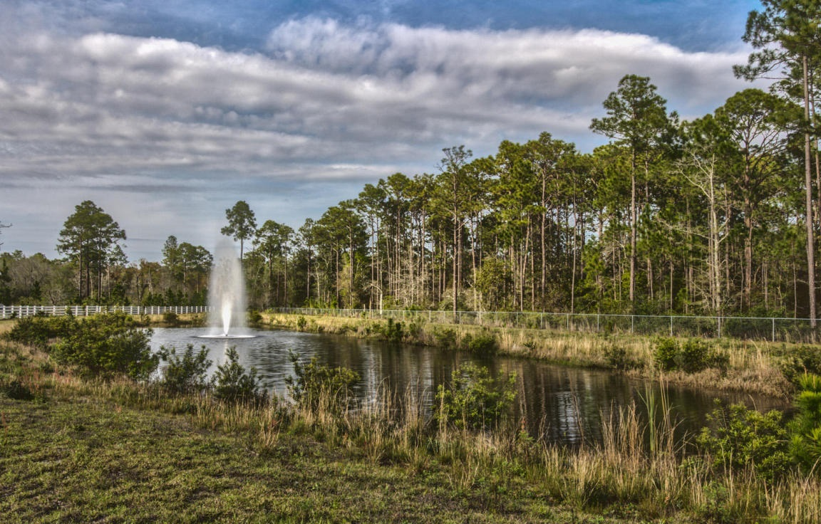 Fanning Bayou Homes For Sale